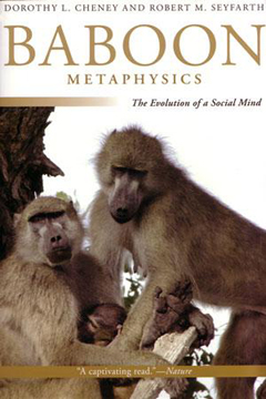 Baboon Metaphysics by Horace Bent