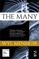Discounted copies of The Many by Wyl Menmuir