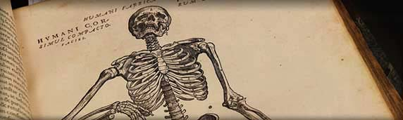 Andreas Vesalius' Fabrica: The Anatomy of a Revolution