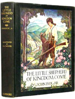 The Little Shepherd of Kingdom Comes - Illustrated by N.C. Wyeth