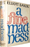 A Fine Madness by Elliott Bake