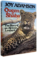 Queen of Shaba by Joy Adamson