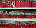 Collection of Little Red Books