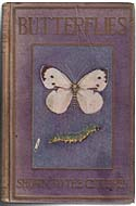 Butterflies and Moths by Theodore Wood