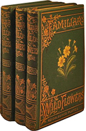 Familiar Wild Flowers, Series 1-5  by Edward F. Hulme