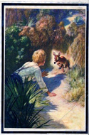 The Yearling by Marjorie Kinnan Rawlings & illustrated by N.C. Wyeth