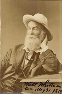 Signed photo of Walt Whitman
