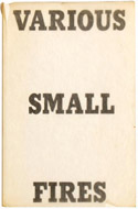 Various Small Fires and Milk by Edward Ruscha
