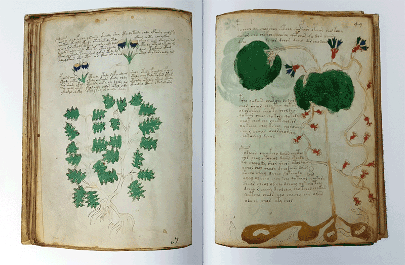 the voynich manuscript essay It is perhaps the greatest mystery of the book world a 240-page illustrated manuscript, whose history can be traced back almost five centuries, remains indecipherable, its language, creator and origin unknown for centuries, people attempted to crack its code then, for about two centuries, it.